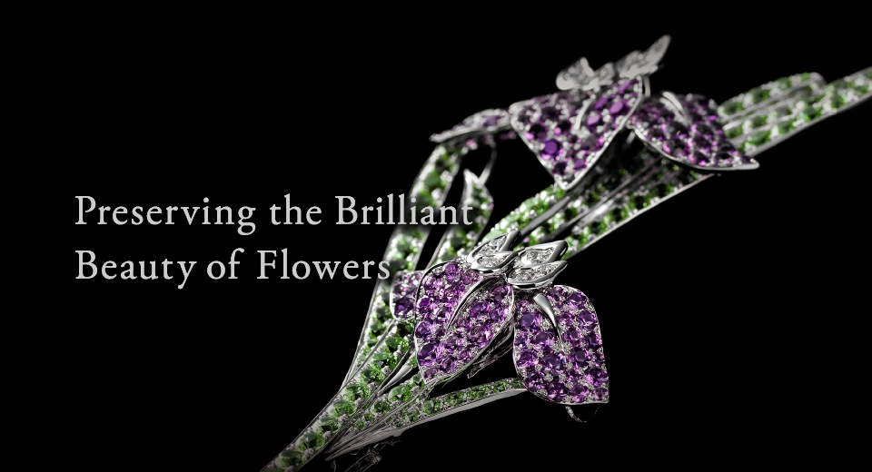 Preserving the Brilliant Beauty of Flowers